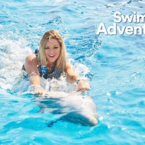Dolphin Discovery-Dolphin Swim Adventure